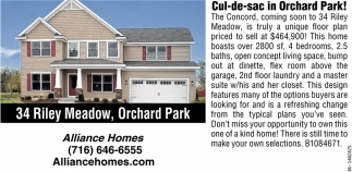 Cul-de-sac in Orchard Park!