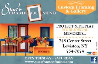 Custom Framing Gallery Sues Frame Of Mind Lewiston Ny