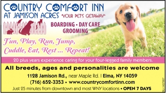 All Breeds Ages And Personalities Are Welcome Country Comfort Inn
