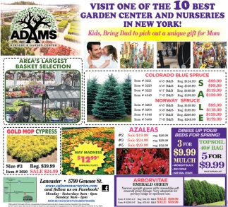 Visit One Of The 10 Best Garden Center And Nurseries In New York!