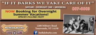Now Booking For Overnight Summer Vacations!