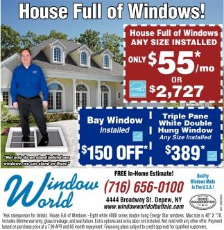House Full of Windows!