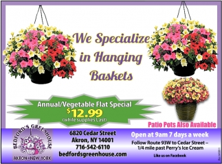 We Specialize In Hanging Baskets