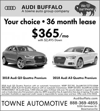 Audi Buffalo