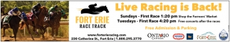 Live Racing Is Back!