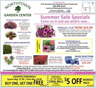 Summer Sale Specials