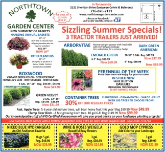 Sizzling Summer Sale Specials!
