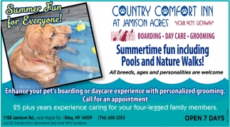 Summer Fun For Everyone