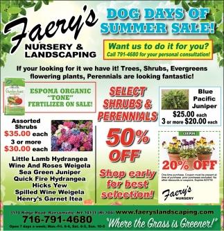 Dog Days Of Summer Sale!