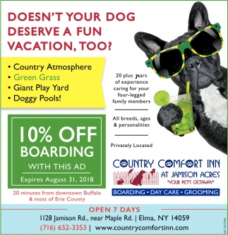 Doesn't Your Dog Deserve A Fun Vacation, Too?