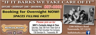Now Booking For Overnight Now!