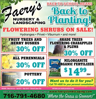 Flowering Shrubs On Sale!
