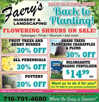 Flowering Shrubs On Sale!