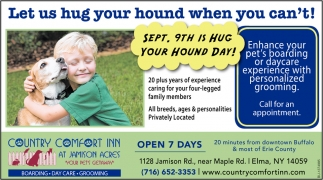 Let Us Hug Your Hound When You Can't!