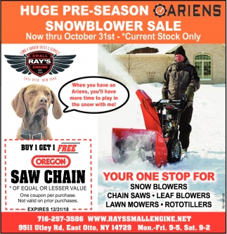 Huge Pre-Season Snowblower Sale