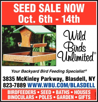 Seed Sale Now
