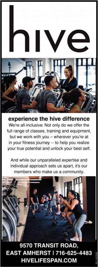 Experience The Hive Difference