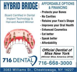 Hybrid Bridge