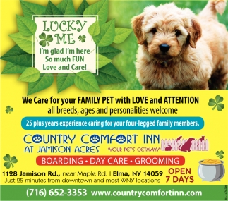 We Care For Your Family Pet Country Comfort Inn Elma Ny