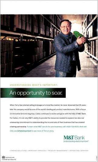 An Opportunity Soar