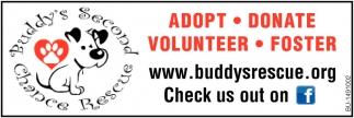 Adopt-Donate-Volunteer-Foster