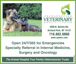 The Animal Hospital Your Family Veterinarian Trusts