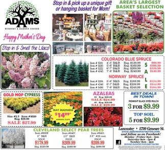 Stop in & Pick Up a Unique Gift or Hanging Basket for Mom!