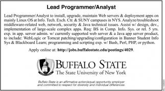 Lead Programmer/ Analyst