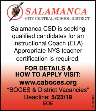 Instructional Coach
