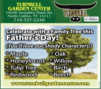 Celebrate with a Family Tree this Father's Day!