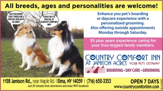 All Breeds, Ages and Personalities are Welcome