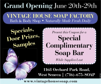 Special Complimentary Soap Bar