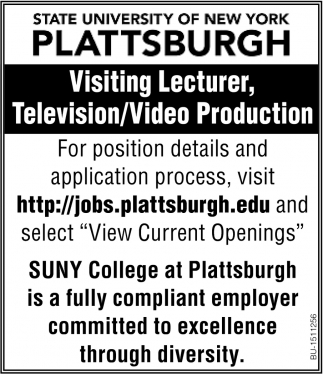 Visiting Lecturer, Television/Video Production