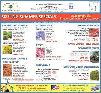 Sizzling Summer Specials