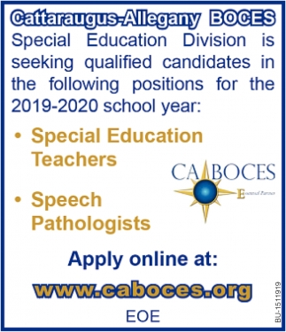 Special Education Teachers & Speech Pathologists Needed