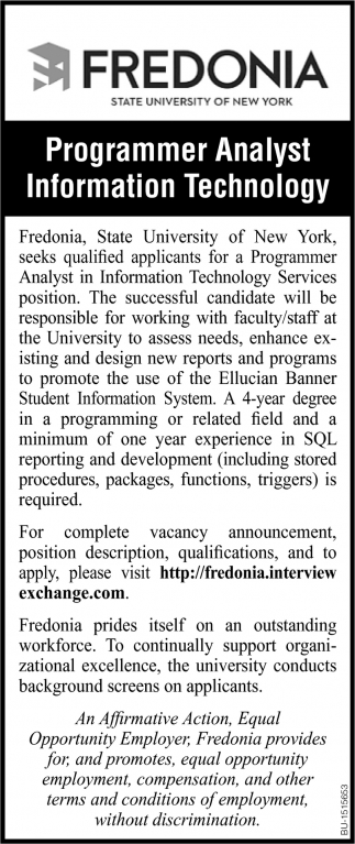 Programmer Analyst Information Technology