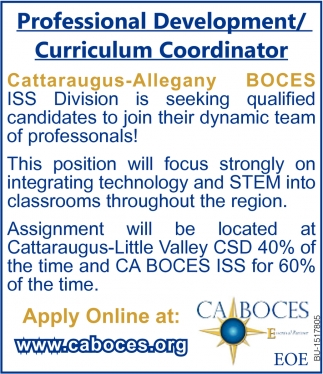 Professional Development/ Curriculum Coordinator