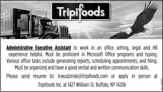 Administrative Executive Assistant
