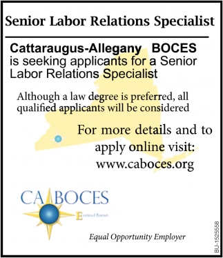 Senior Labor Relations Specialist
