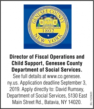 Director of Fiscal Operations and Child Support