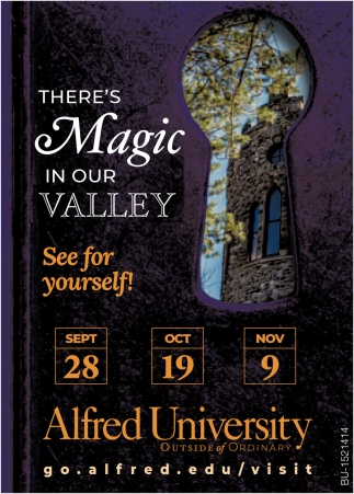 There's Magic in Our Vallkey