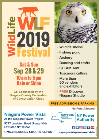 WildLife 2019 Festival