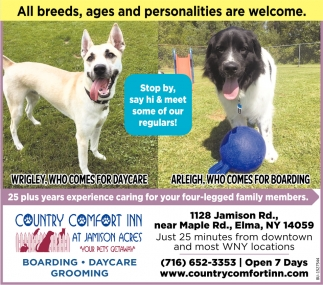 All Breeds, Ages & Personalities are Welcome