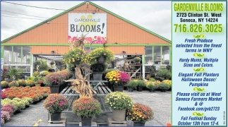 Fresh Produce Selected from the Finest Farm ins WNY