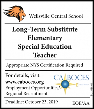 Long-Term Substitute & Special Education Teacher