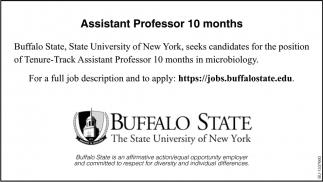 Assistant Professor 10 Months