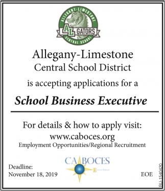 School Business Executive