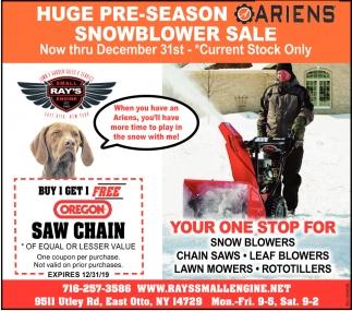 Huge Pre-Season Snowblower Sale
