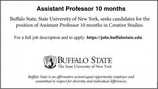 Instructional Designer Buffalo State The State University Of New York Buffalo Ny