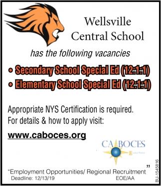 Secondary School Special Ed. & Elementary School Special